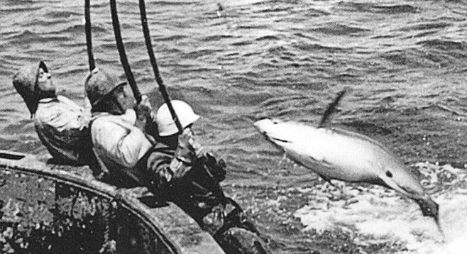 Impossible missions dolphin friendly tuna for Tuna fishing pole