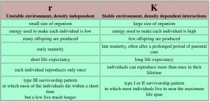 rK species